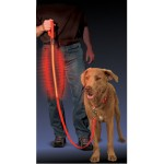NITE IZE - Innovative Accessories - NI-NNL-03-10 - Nite Dog - L.E.D. Pet Leash