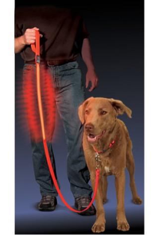 NITE IZE - Innovative Accessories - NI-NNL-03-10 - LED Hundeleine