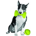 PETPROJEKT - Design and Fun for your Dog - DATA,IMAGE - Enabled