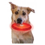 NITE IZE - Innovative Accessories - NI-FFDD-08 - Hunde LED Wurfscheibe